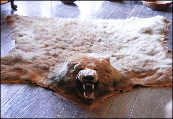 Cheap Bear Skin Rug