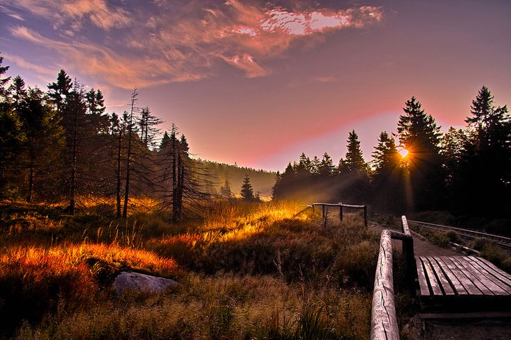 Nationalpark Harz Den Harz entdeckt man zum Beispiel vom Landhaus Dobrick in Braunlage aus:  http://www.mooon.com/de/hotels/landhaus-dobrick