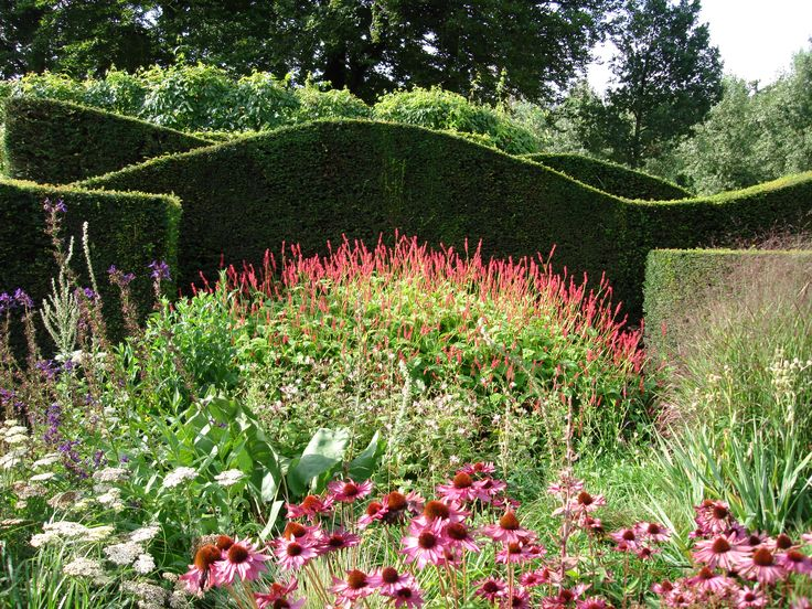77 best images about persicaria on pinterest for Piet oudolf landscape architect