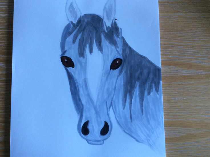 A realistic horse by moose