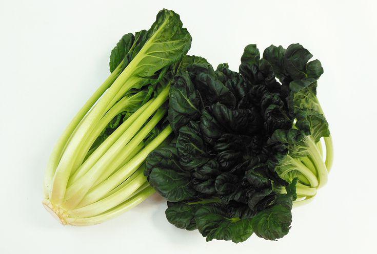 「タアサイ」 原産は中国。晩秋から冬が旬の、青梗菜と同じアブラナ科の野菜です。  葉がちぢんでいるので「ちぢみ雪菜」とも呼ばれています。  小松菜のようなしっかりとした食感で、葉はやわらかく茎はしっかりとしています。 味にクセがなくアクもないので、おひたしや炒め物など、いろいろなお料理に使えます。