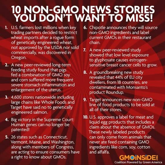 """GMO'S - BOYCOTT & ONLY BUY ORGANIC IF YOU DON""""T WANT POISON!!!"""