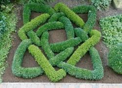 178 best Knot gardens images on Pinterest Gardening Landscaping