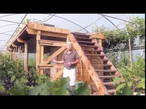Petite initiation à la permaculture a la ferme de bec helloin