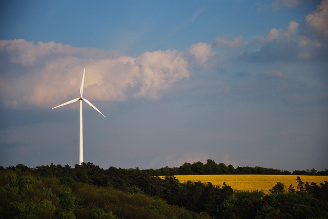 renewable energy on countryside, canola and a wind energy plant     More learning about this topic visit: http://m2zonnepanelenprijs.be