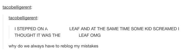 Except Madie would of apologized to the leaf and then the kid