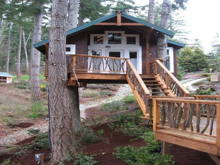 384 best Tree Houses images on Pinterest Treehouses Tiny houses