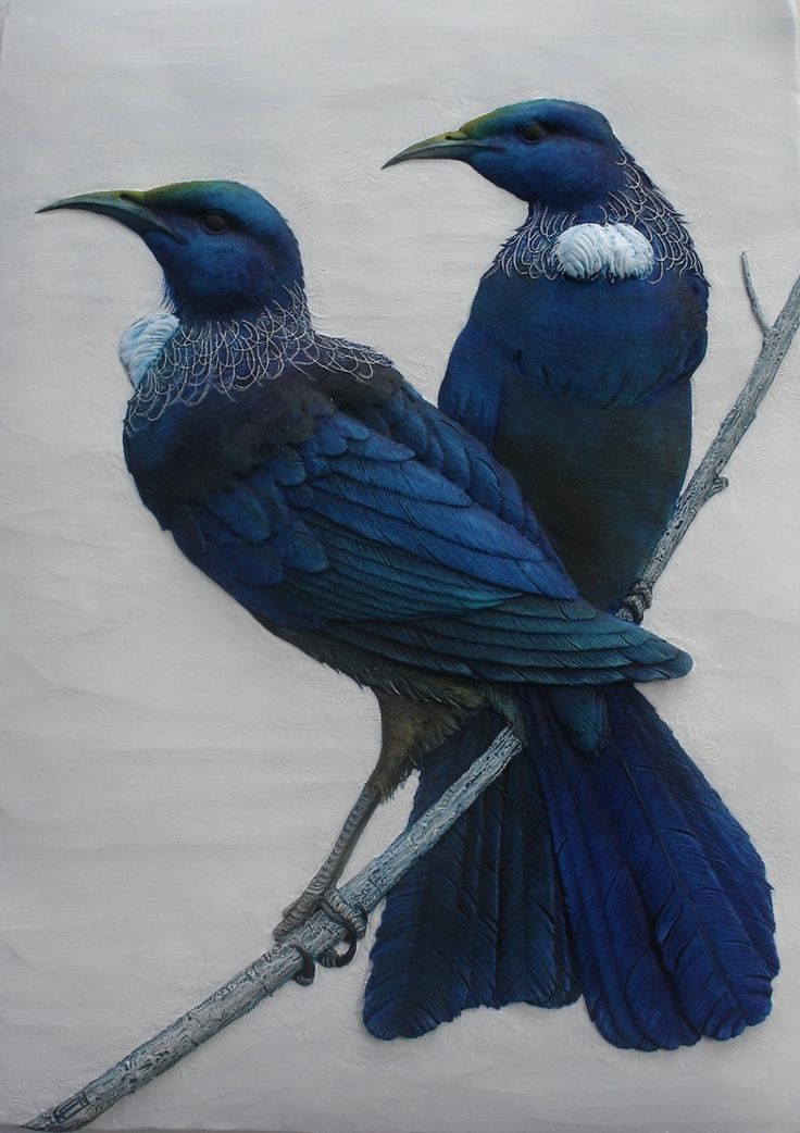 Tuis - Ceramic - Craig Fletcher. One of my favourite New Zealand birds.