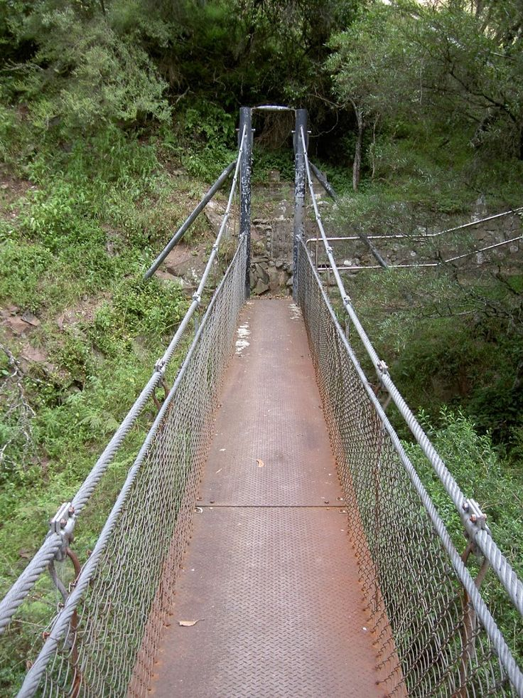 River Walk (Blue Lake) walking track. Jenolan Caves, NSW