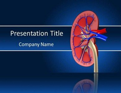 68 best medical powerpoint presentations images on pinterest a kidney stones side effect can be over looked or faulted for something else toneelgroepblik Images