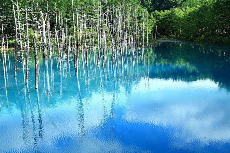 Blue pond-Shirokane onsen,Biei, Hokkaidou - 白金温泉、美瑛、北海道