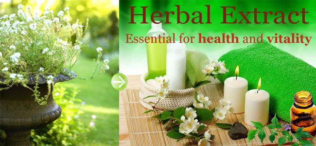 HERBAL EXTRACTS The benefits of medicinal use of herbs have been used and practices for the past 3,000 years. Historic records show that herbs were used for their healing properties by the Persians, Romans, Egyptians, Greeks, Hebrews, and even Native Americans. In fact, herbs have been used for healing almost every kind of illness or health condition.