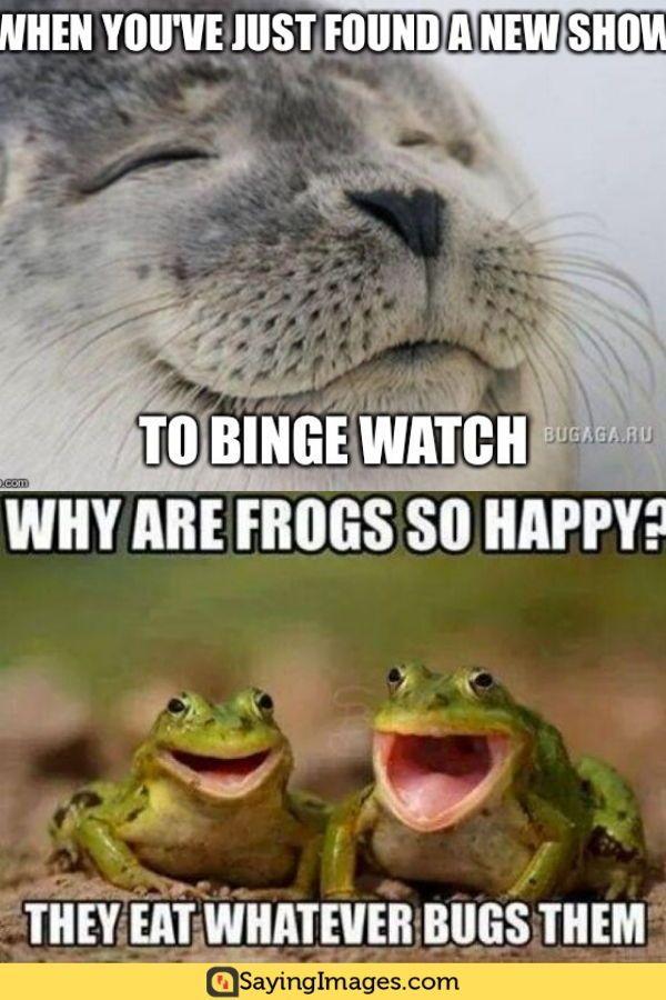 40 Happy Memes To Make You Feel A Whole Lot Better Sayingimages Com Happy Memes Pinterest Humor Memes