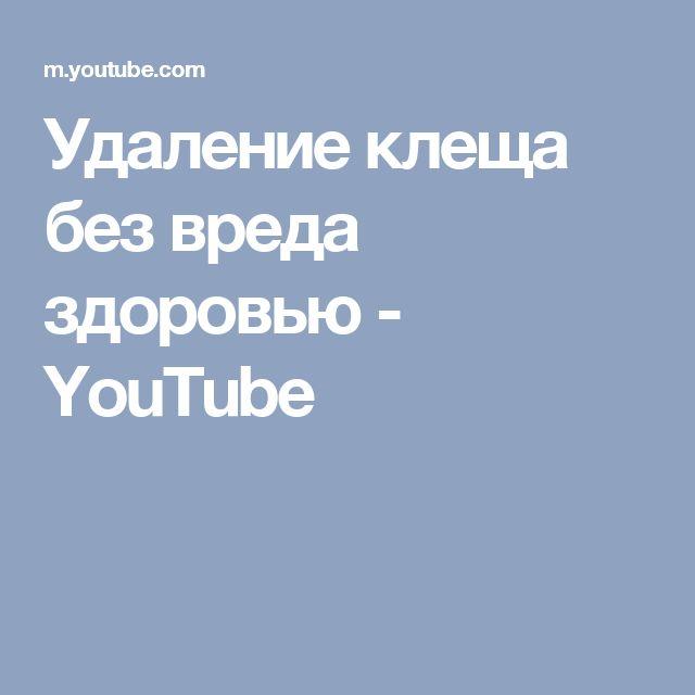 Удаление клеща без вреда здоровью - YouTube