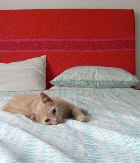 : Cats Addict, Cats Meow Big, Box Market, Friend Decor, Fabric Headboards, Animal House, Meow Cats