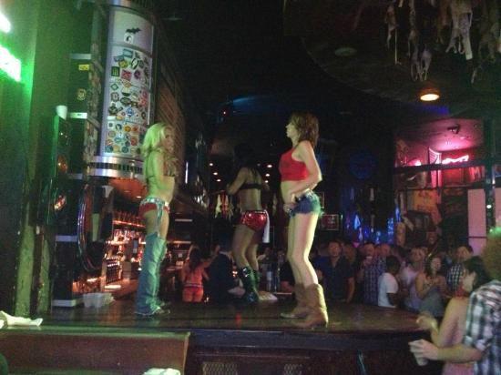Coyote Ugly Saloon Las Vegas : Coyote Ugly - Las Vegas
