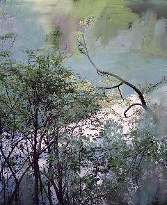 Sandra Kantanen, Untitled (Lake 7), 2011