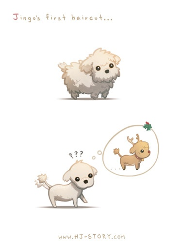 HJ story's puppy ! so cuuuute !!