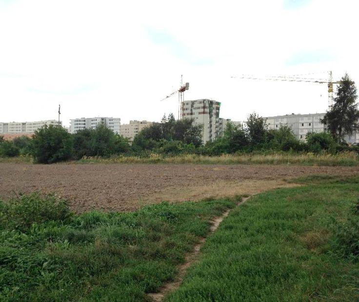 W Krakowie ma powstać nowy park. Co w nim będzie? O tym zdecydują mieszkańcy - Kraków - Wiadomości - Radio Kraków