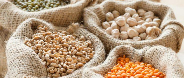 Régime végétarien : les légumes les plus riches en fer