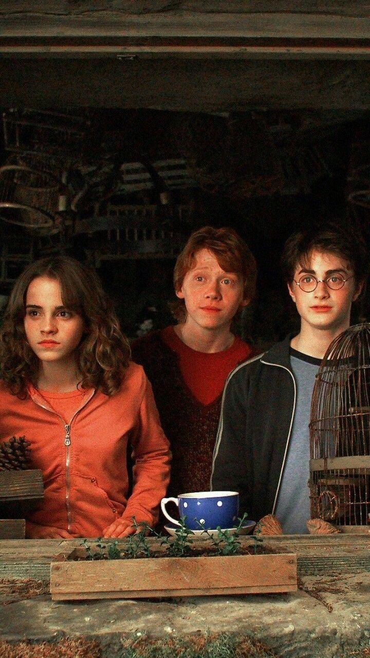 Harry Potter Harry Potter Https Wallpaperpinterest Com Harry Potter 2 Html Harry Potter Cast Harry Potter Fanlari Harry Potter Filmleri