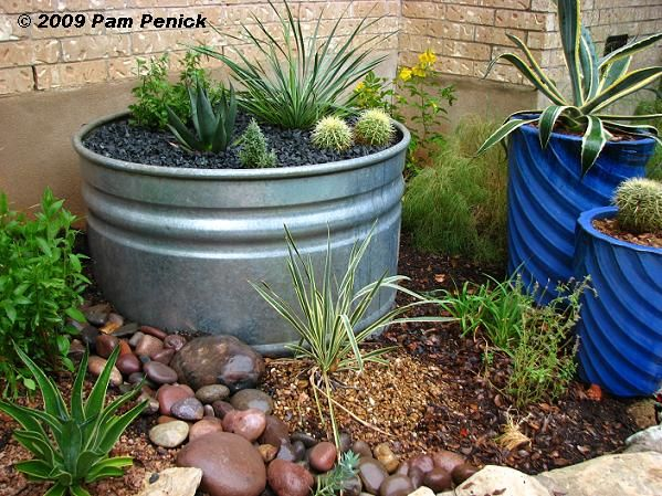 Top 44 ideas about Xeric Landscaping on Pinterest