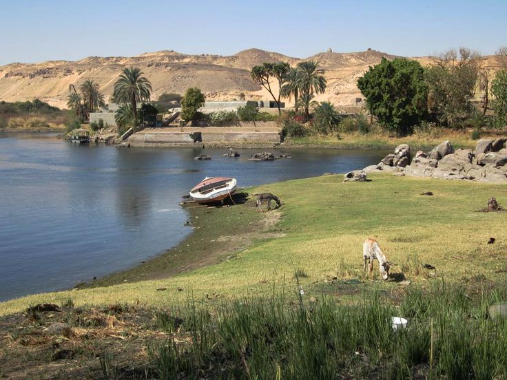 A bucolic view of Elephantine Island, Amun Island, and the west bank of the Nile River near Aswan, Egypt.