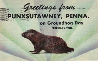There once was a groundhog named Phil He liked . . .