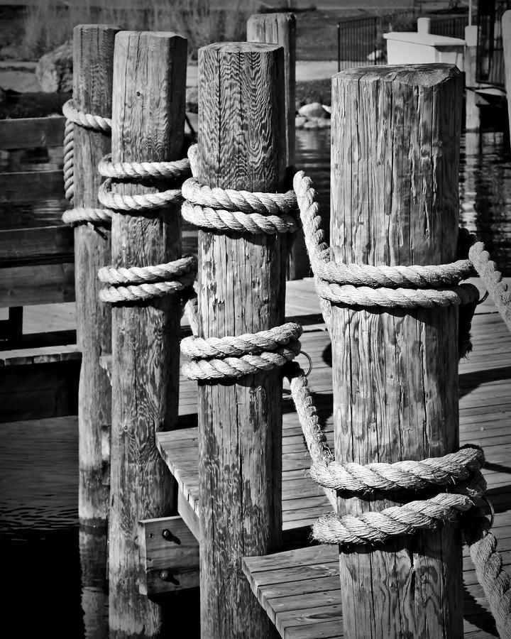 Dock Posts, flanking boardwalk.