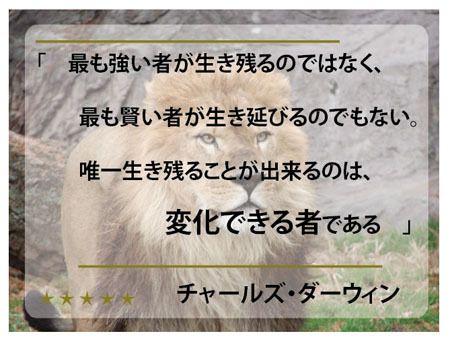 Ichigoの今日の名言は、【 チャールズ・ダーウィン 】の名言から の画像|「スポンサー契約獲得」ノウハウ支援 マイナースポーツ専門