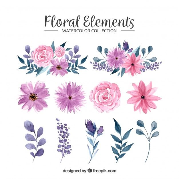 Download Watercolor Floral Element Collection For Free Floral