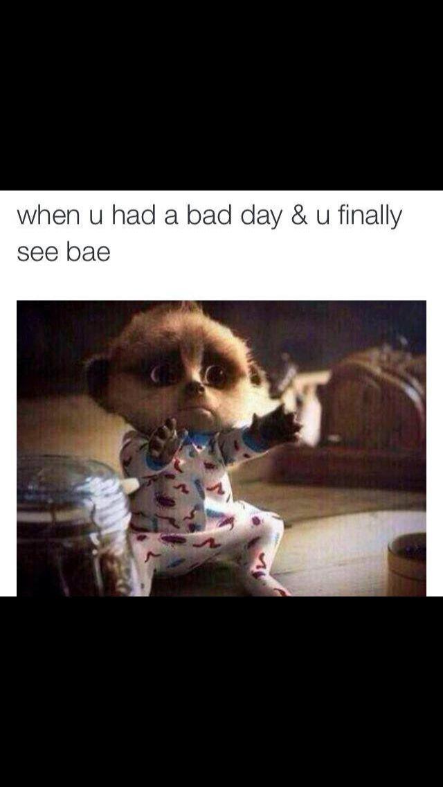 Funny Memes About Bad Relationships : Best relationships images on pinterest funny stuff