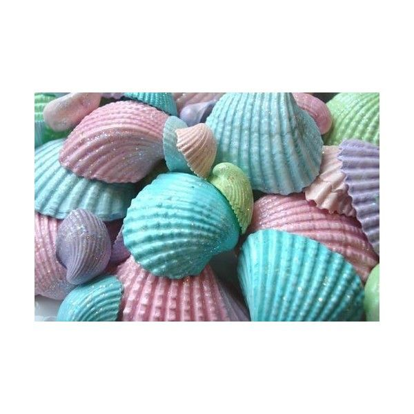 17 best images about seashells on pinterest starfish for 2 mid america plaza suite 1000 oakbrook terrace il 60181