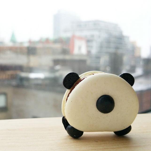 Cuki makaronok | Fotó via boredpanda.com