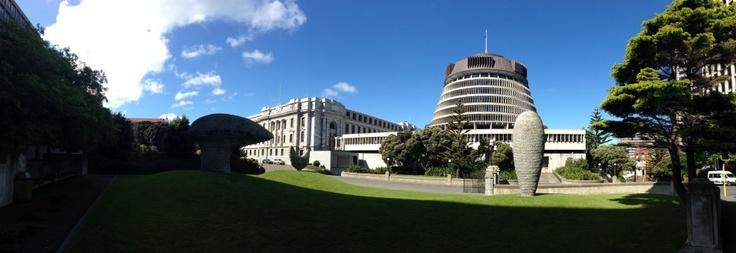 (1) Spring Sunday in Wellington
