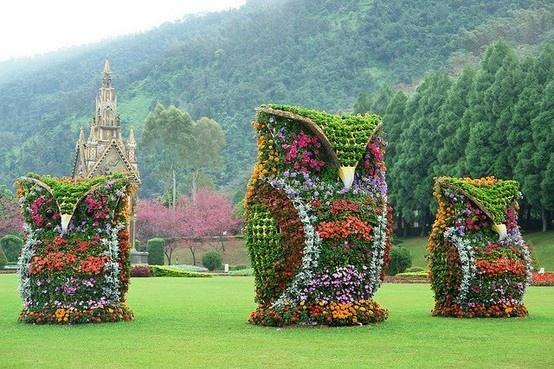 flower owl gardensSculpture, Flower Owls, Taiwan, Plants, Front Yards, Gardens Art, Yards Art, Topiaries, Backyards
