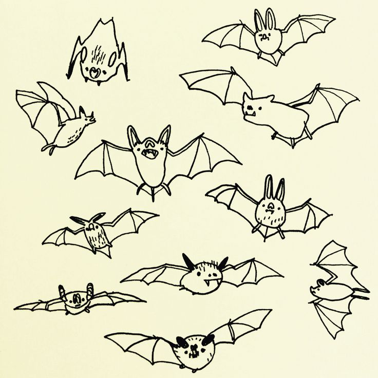 Bats by Marie Åhfeldt, Mås Illustra. www.masillustra.se #illustration #drawing #bat #halloween #masillustra
