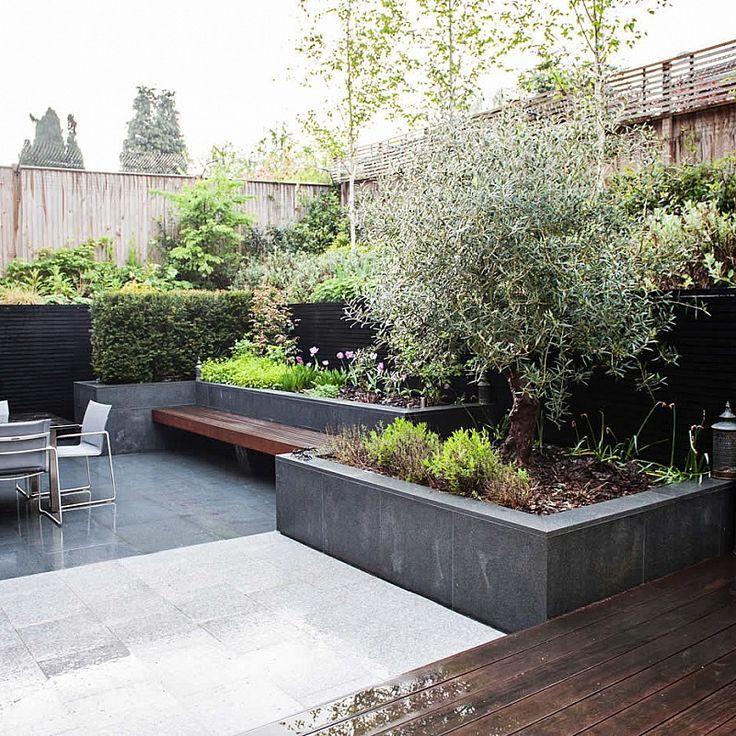 Contemporary Garden Ascot Contemporary Garden Garden Design Contemporary Landscape