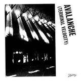 Avalanche (Terminal Velocity) [12 inch Vinyl Single]