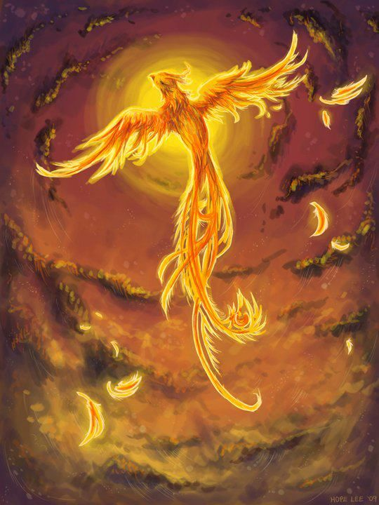 """Heart filled with love is like a phoenix that no cage can imprison.""  ~Rumi"