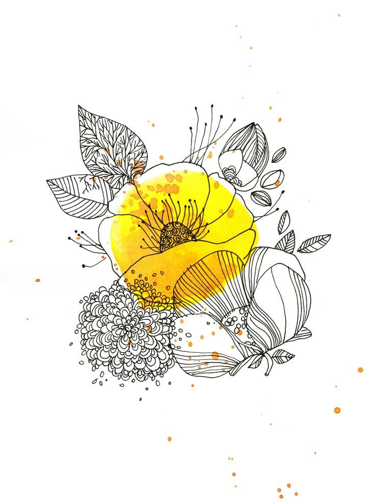 "[ILLUSTRATION] ""Jaune bouton d'or"" par Cécile Hudrisier   #illustration #dessin…"