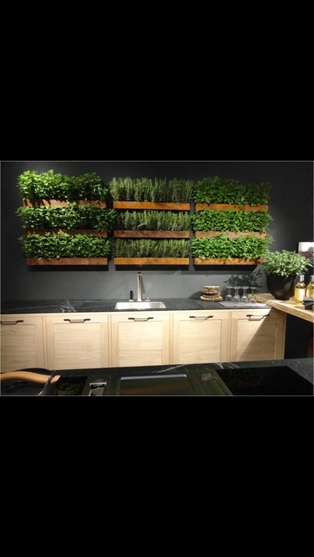 Indoor herb garden!!
