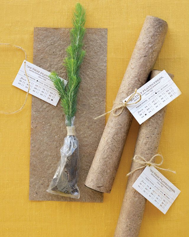 eco friendly party tips. Plant a tree wedding favor. I absolutely love this idea!