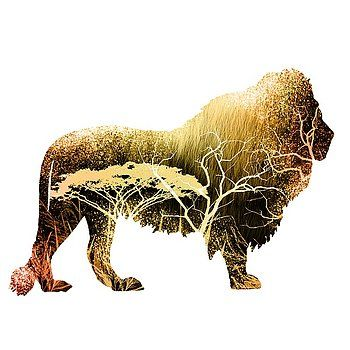 Nostalgic Art - Colorful Lion Art