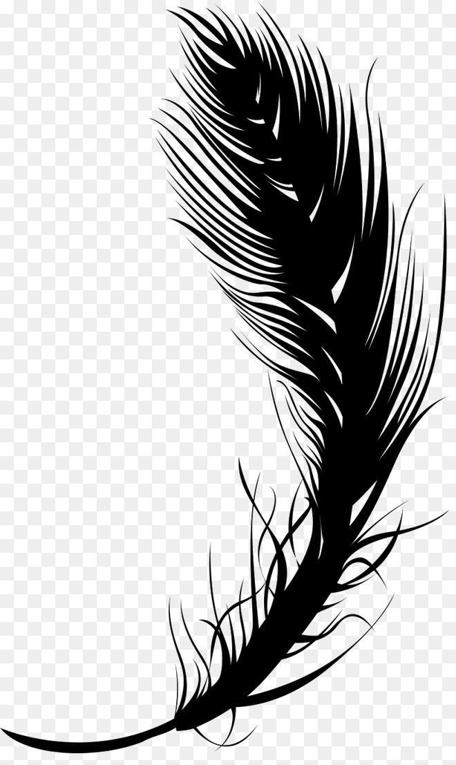 Free Download Black Feather Quill Pen Png Image Iccpic Iccpic Com Asas Png Negras