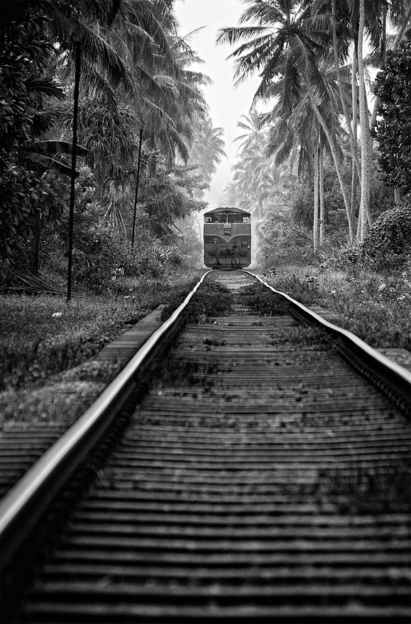 Slow train coming Doctor Mhuni   Actually, while it might have been the 'local' rather than the 'express' it wasn't as slow as I anticipated. The train driver was honking his horn as I took this shot. I scrambled off the line in time okay, but my heart was certainly beating fast by then. Taken in Bentota, Sri Lanka.
