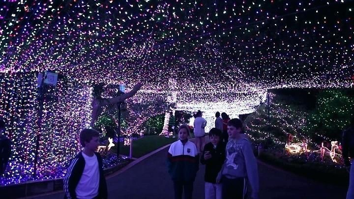 Outdoor Wedding Lighting Decoration Ideas Celebrations Light Decoration Ideas For Home Phenomenal Led Light Decora Outdoor Wedding Lighting Fairy Lights Lights