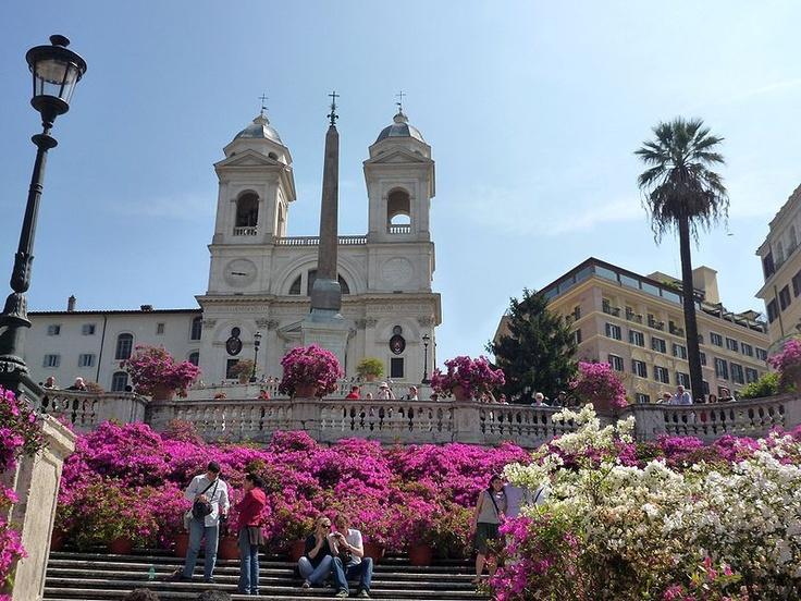 Spanish Steps... a carpet of flowers