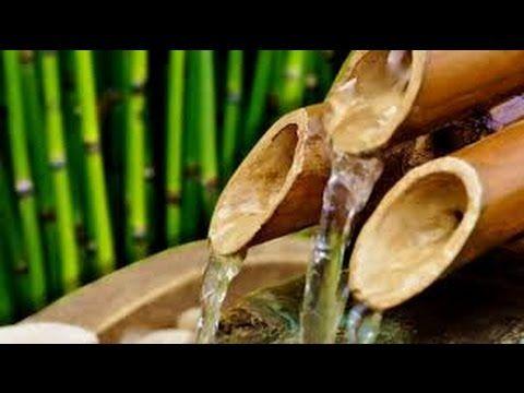 Clorofilla: Zen musica dolce e suono dell'acqua che scorre per...