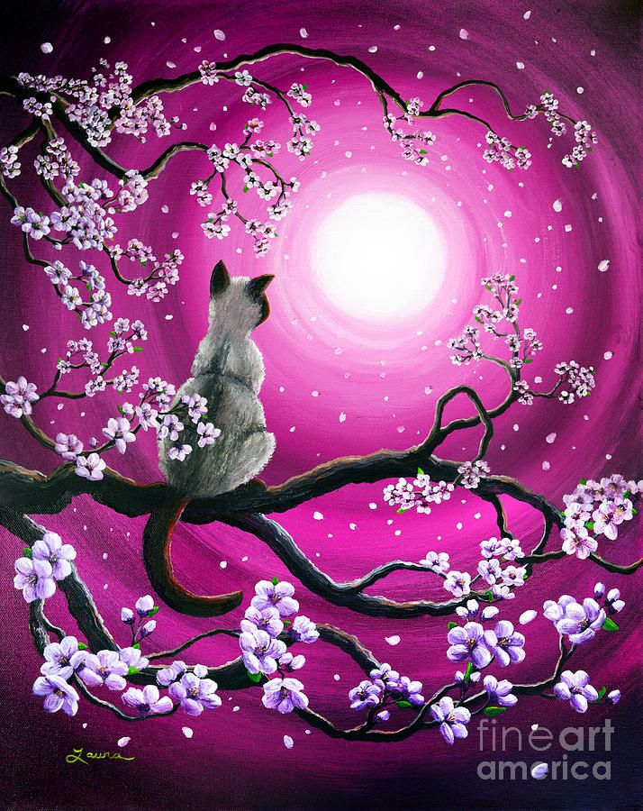 Japanese Sakura Drawing | Magenta Morning Sakura Painting